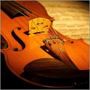 バイオリン・ヴィオラ・チェロ・コントラバス